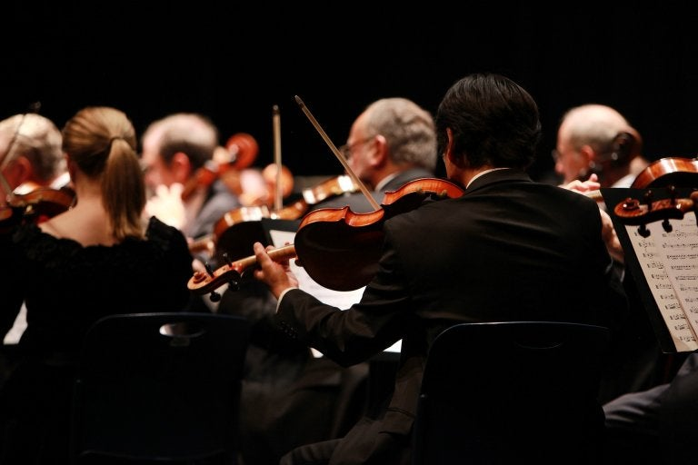 behind view of a symphony orchestra in the violin section